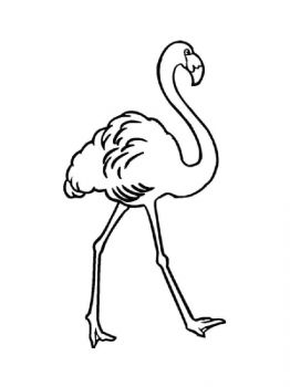 Flamingos-birds-coloring-pages-21