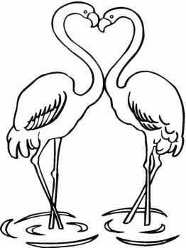 Flamingos-birds-coloring-pages-3