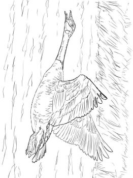 Gooses-birds-coloring-pages-5