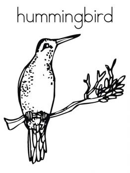 Hummingbirds-birds-coloring-pages-5