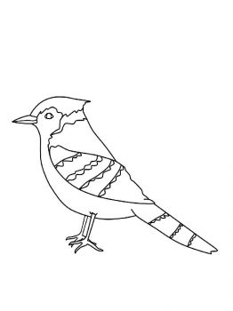 Jay-birds-coloring-pages-2