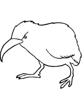 Kiwi-birds-coloring-pages-10