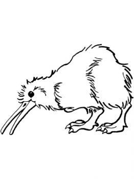 Kiwi-birds-coloring-pages-8