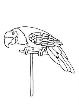 Macaw-birds-coloring-pages-1