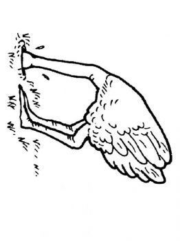 Ostrich-birds-coloring-pages-1