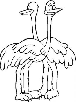 Ostrich-birds-coloring-pages-8