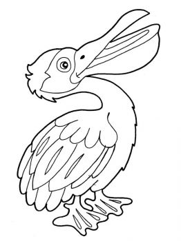 Pelicans-birds-coloring-pages-10