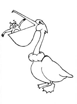 Pelicans-birds-coloring-pages-8