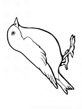 Sparrows-birds-coloring-pages-1