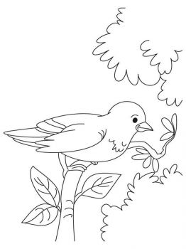 Sparrows-birds-coloring-pages-3