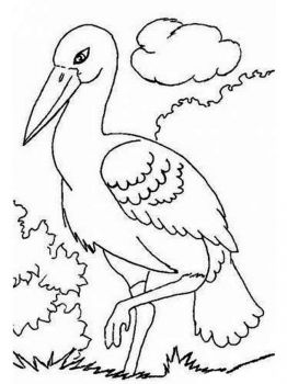 Stork-birds-coloring-pages-2