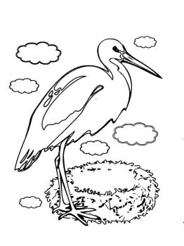 Stork-birds-coloring-pages-9