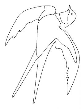 swallow-birds-coloring-pages-13