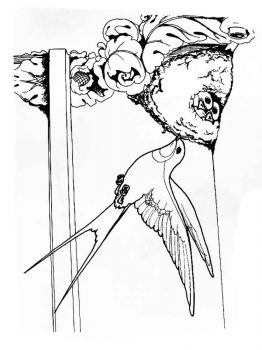 swallow-birds-coloring-pages-8