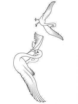 Swans-birds-coloring-pages-6