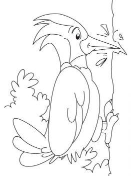 Woodpeckers-birds-coloring-pages-13