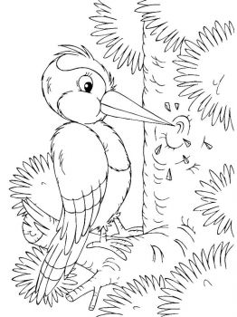 Woodpeckers-birds-coloring-pages-6