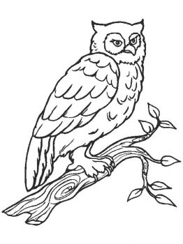 coloring-pages-animals-owl-14