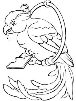 coloring-pages-animals-parrot-1