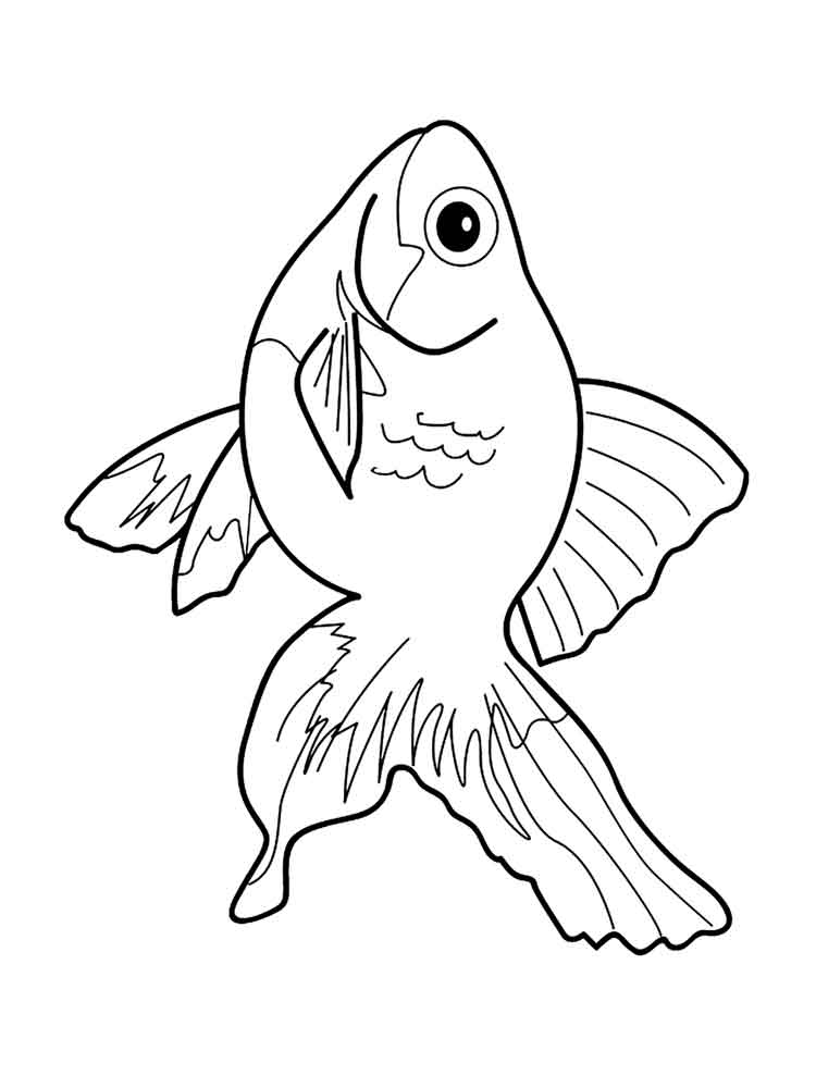 malvorlagen aquarium fische - ausmalbilder kostenlos zum