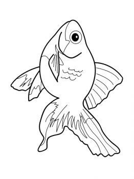 Aquarium-Fish-coloring-pages-14