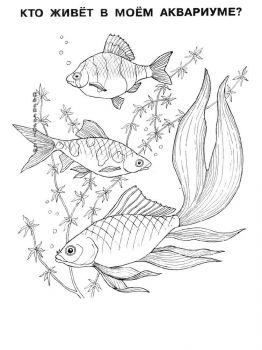 Aquarium-Fish-coloring-pages-2
