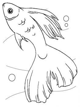 Aquarium-Fish-coloring-pages-4