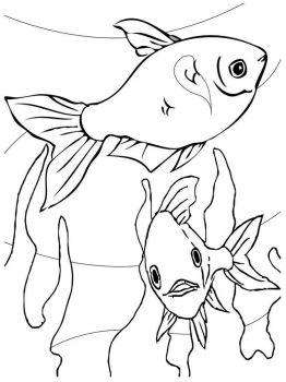 Aquarium-Fish-coloring-pages-5