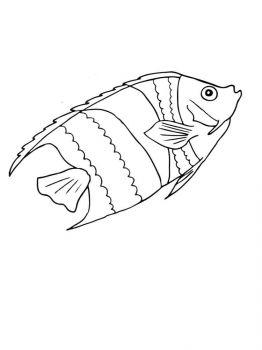 Aquarium-Fish-coloring-pages-7