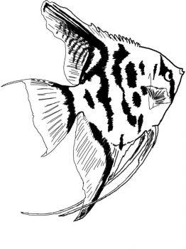 Aquarium-Fish-coloring-pages-9