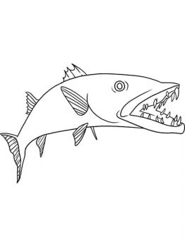 Barracudas-coloring pages-6