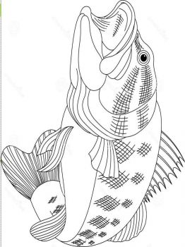Basses-coloring pages-7