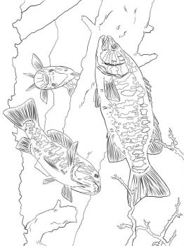 Basses-coloring pages-9