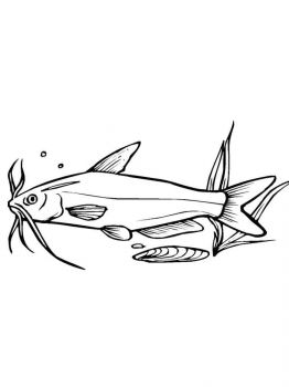 Catfish-coloring pages-10