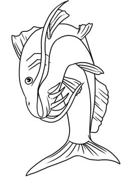 Catfish-coloring pages-13