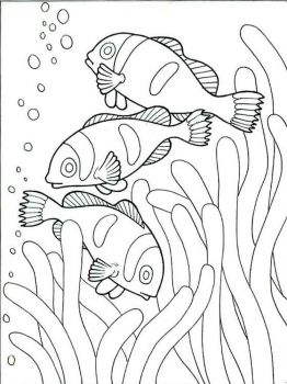 Clownfish-coloring pages-1