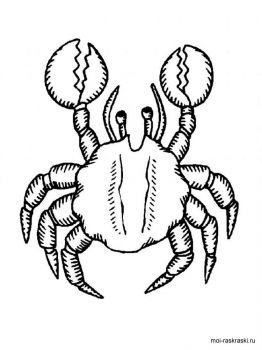 Crabs-coloring-pages-11