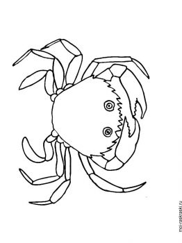 Crabs-coloring-pages-5