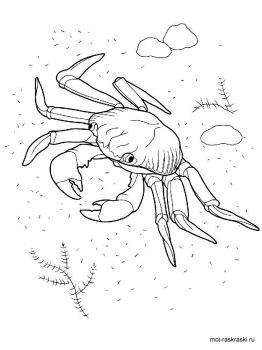 Crabs-coloring-pages-6