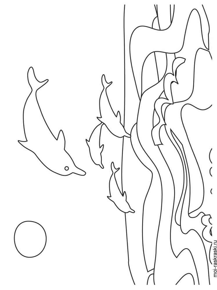 malvorlagen delfin - ausmalbilder kostenlos zum ausdrucken