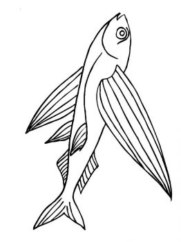 Flying-fish-coloring pages-2