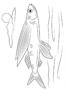 Flying-fish-coloring pages-7