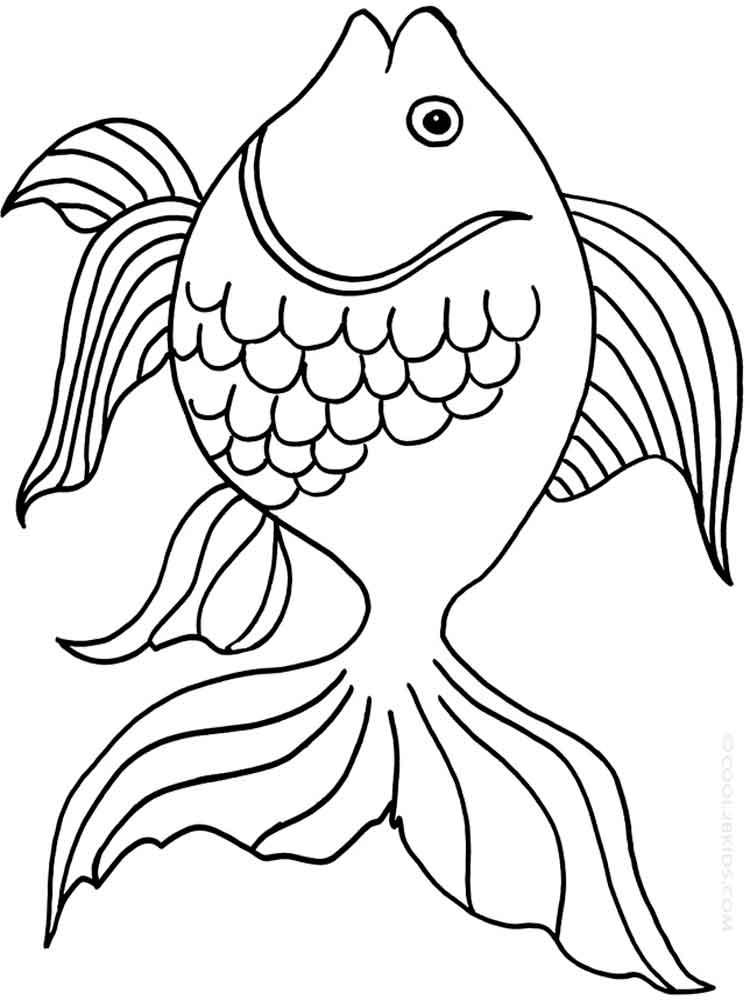 malvorlagen goldfisch  ausmalbilder kostenlos zum ausdrucken