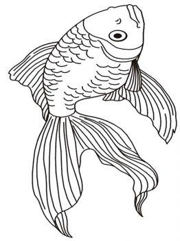 malvorlagen goldfisch - ausmalbilder kostenlos zum ausdrucken