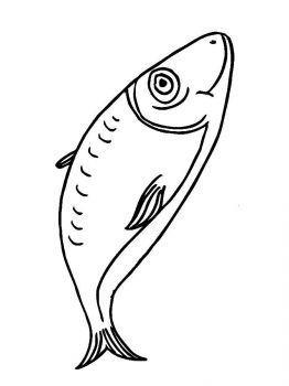 Herring-coloring pages-1