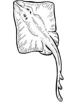 Ray-coloring pages-11