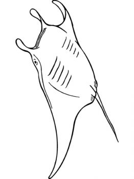Ray-coloring pages-13