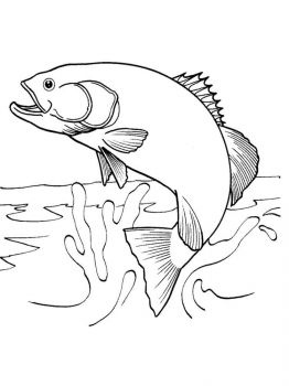 Salmon-coloring pages-3