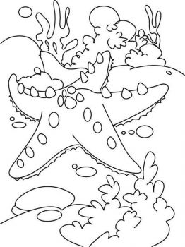 Starfish-coloring pages-8