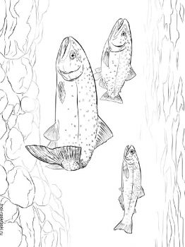 Trouts-coloring-pages-2
